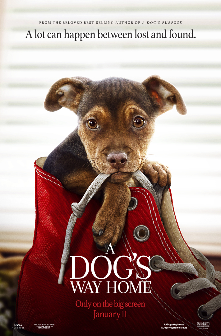 A Dog's Way Home at an AMC Theatre near you