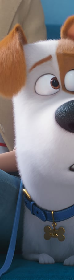 Movie still from The Secret Life Of Pets 2