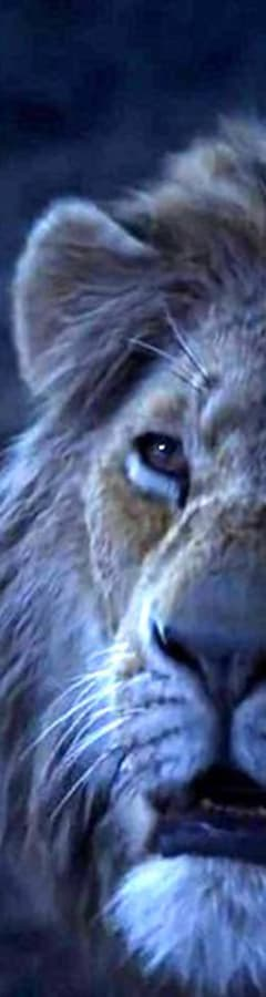 Movie still from The Lion King
