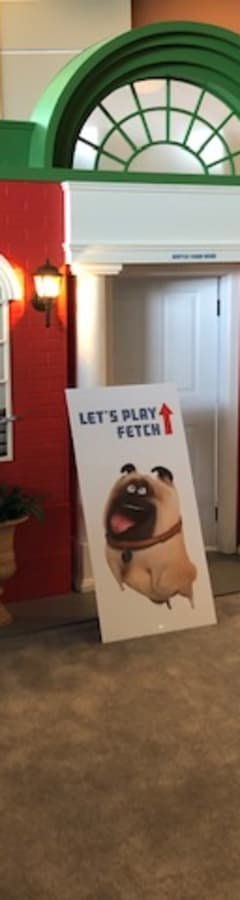 Movie still from Secret Life of Pets Pop-Up (In-Lobby Experience)