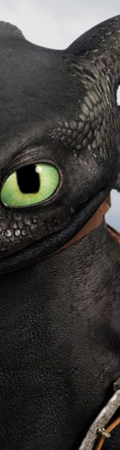 Movie still from How To Train Your Dragon 2