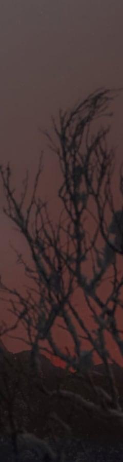 Movie still from Krampus