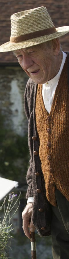 Movie still from Mr. Holmes