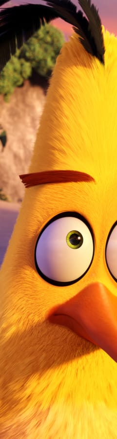 Movie still from The Angry Birds Movie