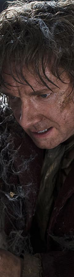 Movie still from The Hobbit: The Desolation Of Smaug