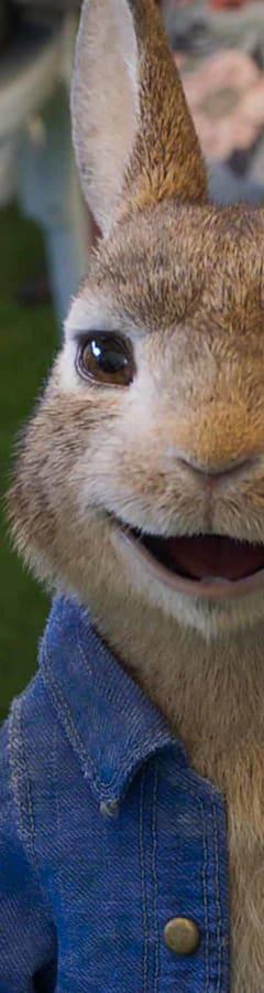 Movie still from Peter Rabbit 2: The Runaway