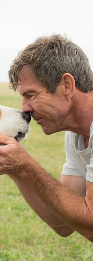 Movie still from A Dog's Purpose
