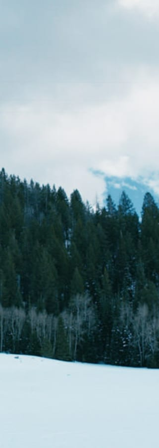 Movie still from Wind River