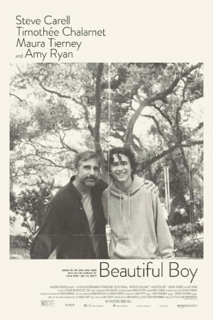 movie poster for Beautiful Boy
