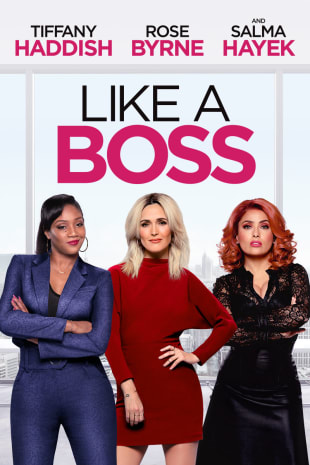 movie poster for Like A Boss