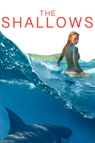 movie poster for The Shallows