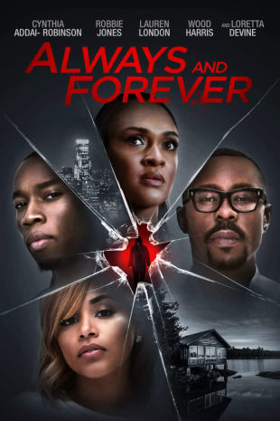movie poster for Always And Forever