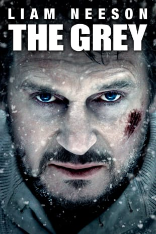 movie poster for The Grey