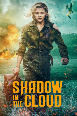 movie poster for Shadow In The Cloud