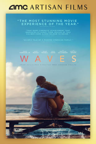 movie poster for Waves