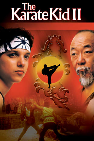 movie poster for The Karate Kid II