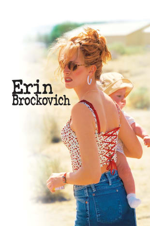 movie poster for Erin Brockovich