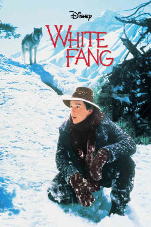 movie poster for White Fang