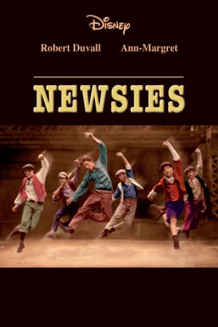 movie poster for Newsies