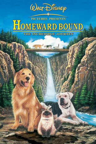 movie poster for Homeward Bound: The Incredible Journey