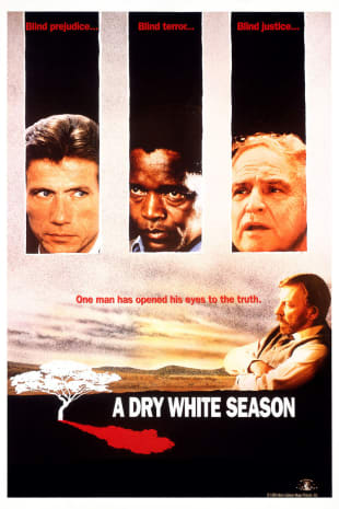 movie poster for A Dry White Season