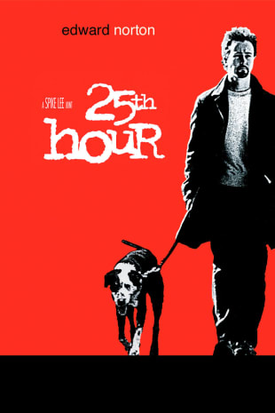 movie poster for 25th Hour