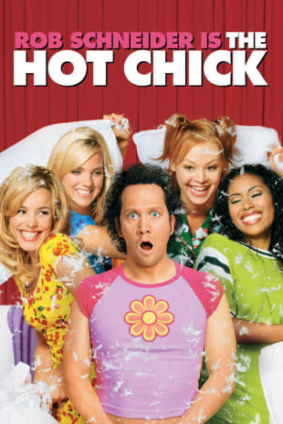 movie poster for The Hot Chick