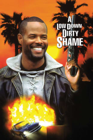 movie poster for A Low Down Dirty Shame