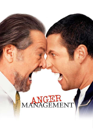 movie poster for Anger Management