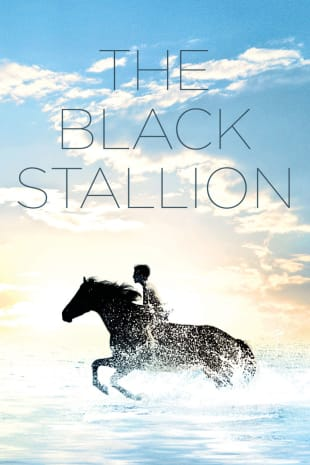 movie poster for The Black Stallion