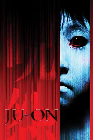 movie poster for Ju-on: The Grudge