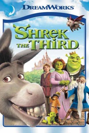 movie poster for Shrek The Third