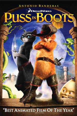 movie poster for Puss In Boots