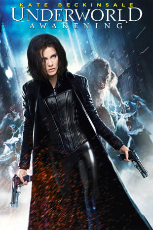 movie poster for Underworld Awakening
