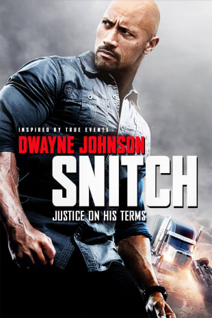 movie poster for Snitch