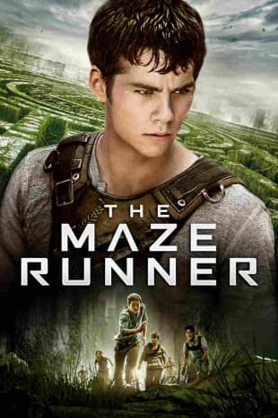 movie poster for The Maze Runner