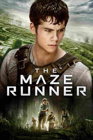 movie poster for The Maze Runner