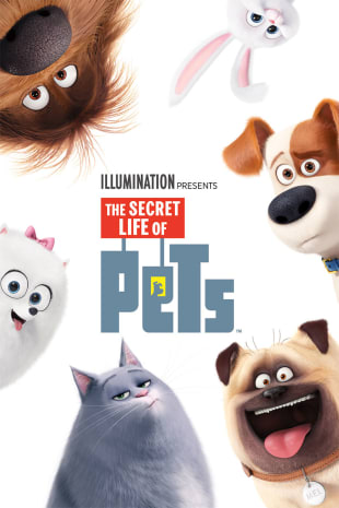 movie poster for The Secret Life Of Pets