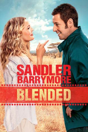 movie poster for Blended