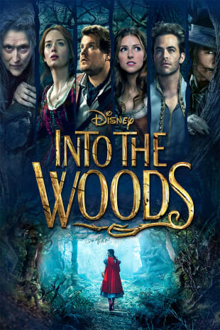 movie poster for Into The Woods