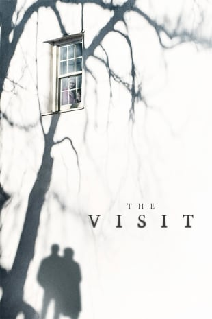 movie poster for The Visit