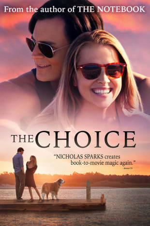 movie poster for The Choice