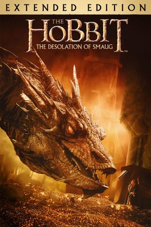 movie poster for The Hobbit: The Desolation of Smaug (Extended Edition)