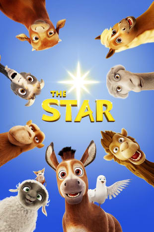 movie poster for The Star
