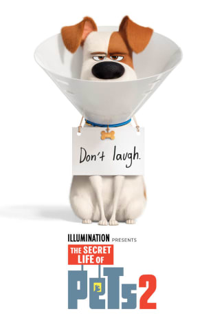 movie poster for The Secret Life Of Pets 2