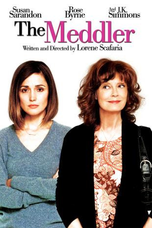 movie poster for The Meddler