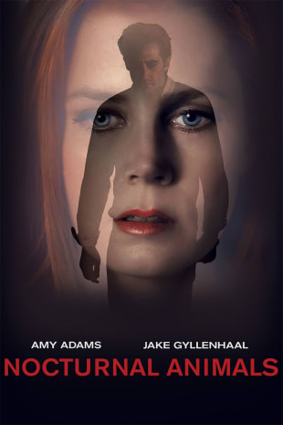 movie poster for Nocturnal Animals