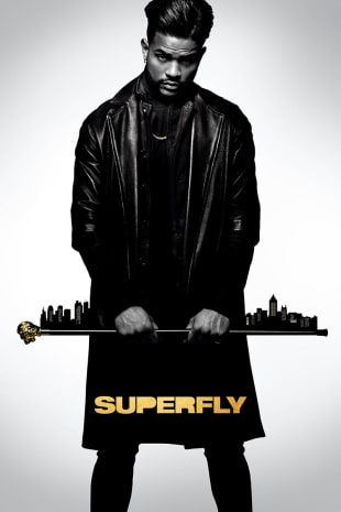 movie poster for Superfly