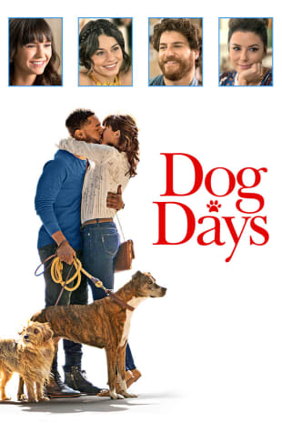 movie poster for Dog Days