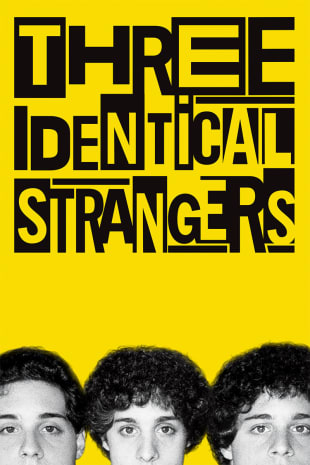 movie poster for Three Identical Strangers